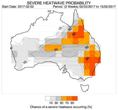 POAMAs experimental severe heat model shows a high probability of extreme heat to 15 February. Source: http://poama.bom.gov.au/