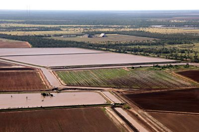 Murray Darling Basin Plan in Jeopardy